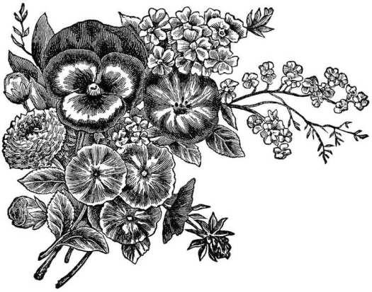 dessins-imprimer-style-shabby-pensées-autres-fleurs
